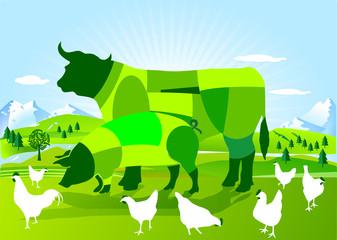 Natur Ökologie Organisch