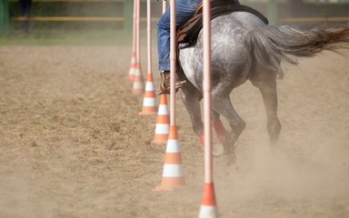 Horse race: Pole bending