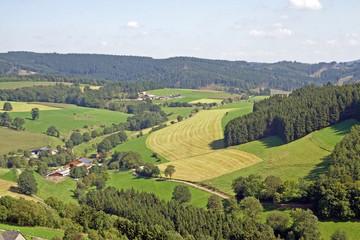 Panoramaaufnahme Sauerland (Eversberg,Nordrhein-Westfalen)