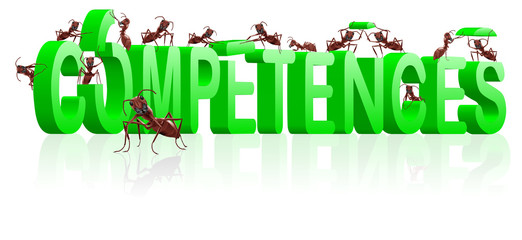 competences building skills knowledge or behavior