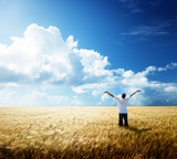 Fototapety happy young man rest on wheat field