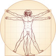 The Vitruvian man
