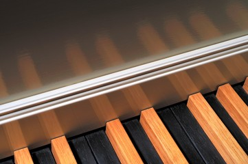Harpsichord detail