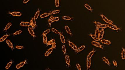 bacteria 04