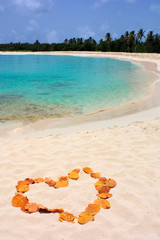 a heart of leaves on a beach in a tropical destination