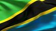Creased Tanzania satin flag in wind with seams and wrinkle