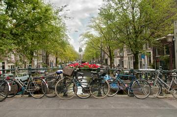 Bikes in Ansterdam