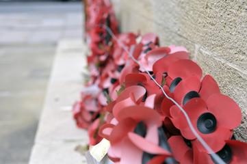 Armistice day poppy wreaths