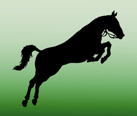 horse jump vector silhouette