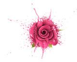 dye rose poster