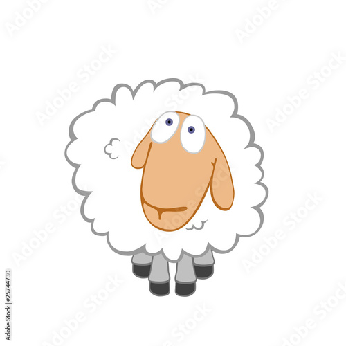 Kind innocent sheep