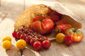 Tomaten - Füllhorn in Papiertüte
