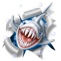 shark strap