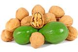 Ripe and unripe walnuts poster