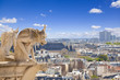 Notre Dame: chimeras overlooking the skyline of Paris