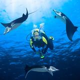 Fototapeta Malediwy - manta - Poza Pracą / Sporty