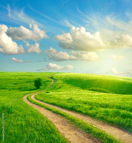 Fototapeten,gras,straßen,himmel,grün