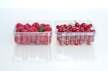 Beautiful raspberries