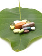 vitamins tablets and pills on green leaf