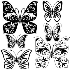 Set black and white butterflies