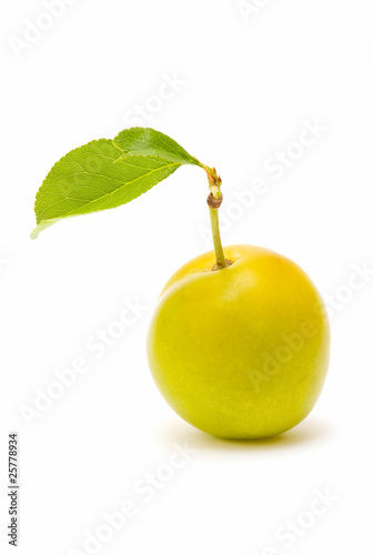 fresh plum on white background