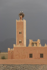 Stork's nest on the top of a minaret in Morocco