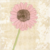 Fototapety Vintage old paper background with flower, vector texture