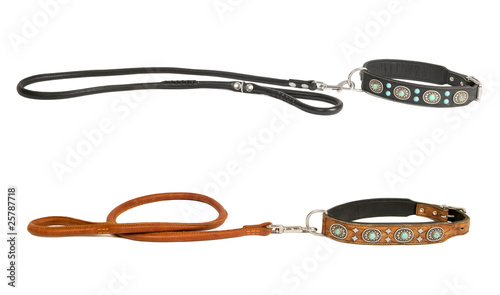 two dog collar with leash