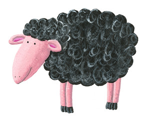 Cute black sheep
