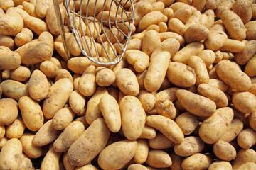 neue kartoffeln, marktverkauf