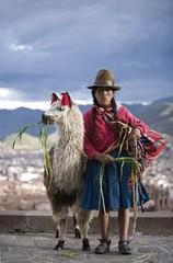 Peruvian Woman Llama (Lama Glama), Cuzco, Peru