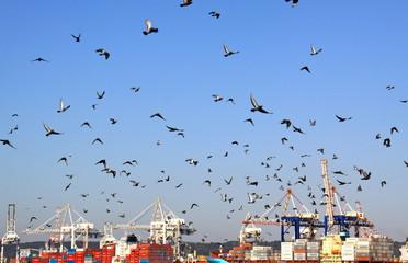 Puerto de Durban - Sudafrica