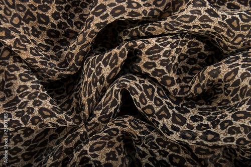 Ткань под леопарда, фото 1972780, снято 11 сентября 2010 г. (c) Комаров...
