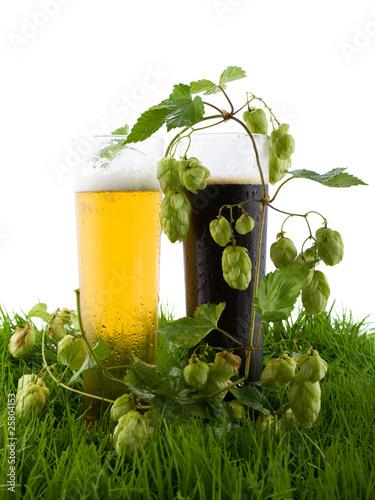 bier und hopfen auf dem gras von sergey kohl lizenzfreies foto 25804153 auf. Black Bedroom Furniture Sets. Home Design Ideas