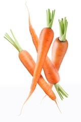 Fresh ripe carrots