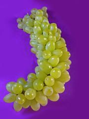 Grapes, Vitis vinifera, species: voinierianum