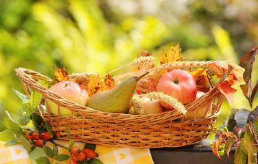 Autumn basket full of fruits