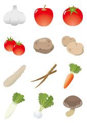 食材 野菜イラスト