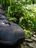 Hiking boot in forest
