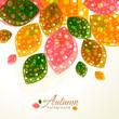 roleta: Autumn