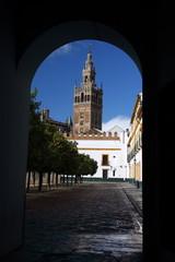 cathédrale de Séville (Espagne)