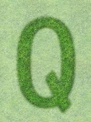 green grass letter