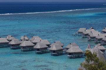 Luxury hotel bungalows in Moorea island