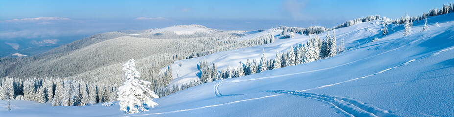 winter mountain panorama landscape