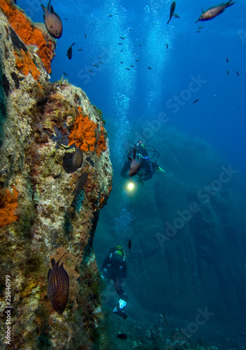Underwater world. Divers and fishes