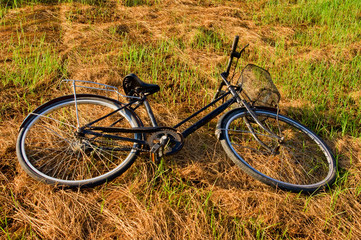 Black Bike Lying on Green Grass