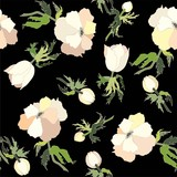Background. Anemones.