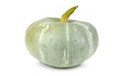 Unripe green pumpkin poster