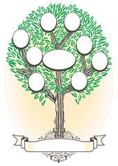 árbol genealógico - Genealogía