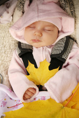 Newborn baby sleeping outdoor holding yellow autumn leaves
